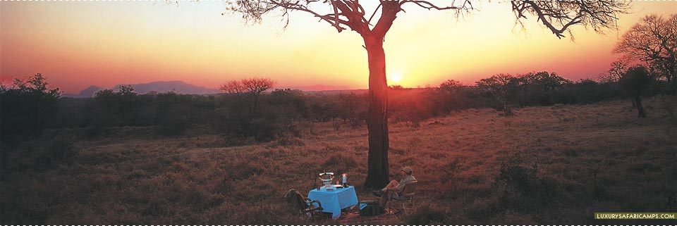 Royal Malewane Lodge - Bush dining