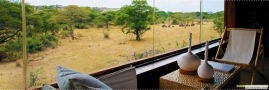 Elephant family outside your suite at Singita Faru Faru lodge