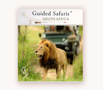Luxury Safari Lodges Private South Africa Safaris