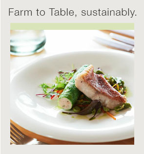 Farm to table sustainability