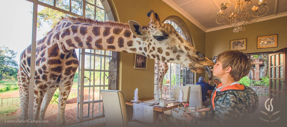 Special meals for children on Safari in Africa