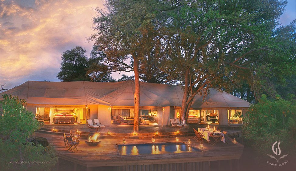 Exclusive family safari in Africa