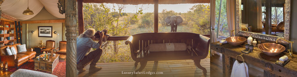Private South Africa Guided Safaris
