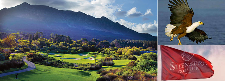 Steenberg Luxury Golf in Cape Town